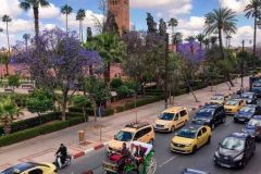 حدائق مراكش