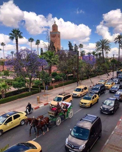 حنين إلى مراكش التي لم تعد كما كانت